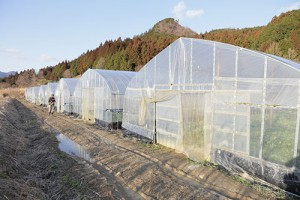 regularly_img001